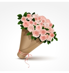 bouquet pink roses isolated vector image