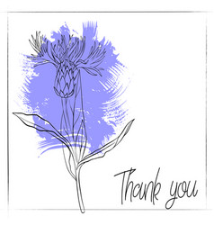 Drawing cornflower vector