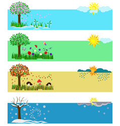 Four seasons spring summer fall winter set vector