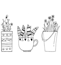 Hand drawn of set vintage cactus flowers in the vector