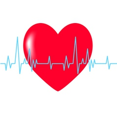 heart red cardiogram blue vector image