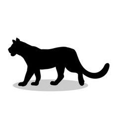 Lioness wildcat predator black silhouette animal vector