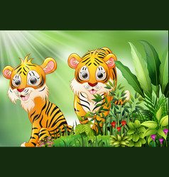 nature scene with two tiger cartoon vector image
