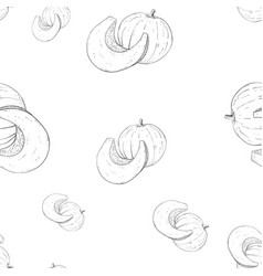 pumpkin outline hand drawn sketch as seamless vector image