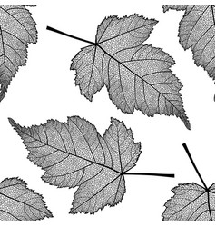 seamless pattern with skeletonized leaves vector image