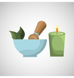 spa treatment icon vector image