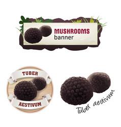 Set of mushroom banner badge sticker vector