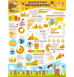 Beekeeping industry infographic poster for apiary vector
