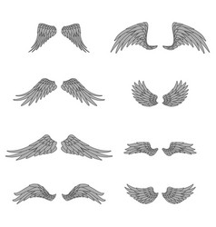 bird lineart isolated wings animal angel fly set vector image