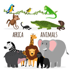cartoon exotic africa animals vector image