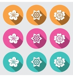 Flower icon set Primula daisy petunia orchid vector