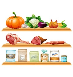 Food and ingredients on the shelf vector image