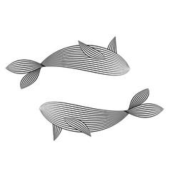 Lines fish vector