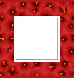 red hibiscus syriacus - rose of sharon banner card vector image