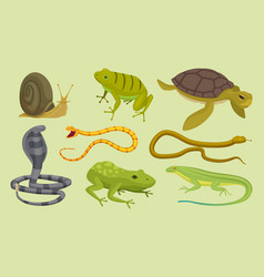 reptiles set lizard snake turtles snail cartoon vector image