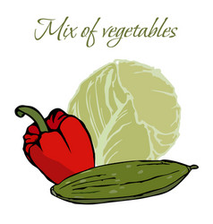 tasty veggies mix of vegetables vector image