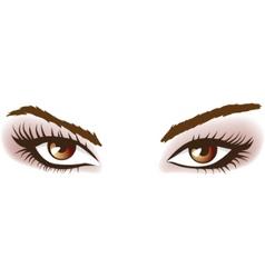 woman brown eyes vector image vector image
