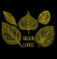 gold vein leaves set vector image
