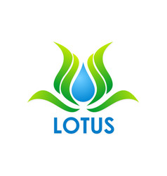 lotus flower swirl logo vector image