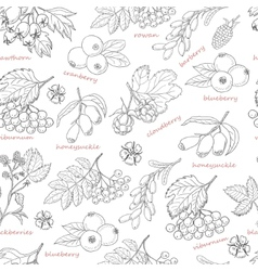 Seamless pattern with forest berries on white vector
