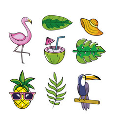 set tropical animals with fruits and leaves plants vector image