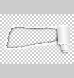 torn snatched hole in sheet vector image