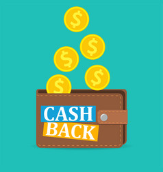 Cash back icon vector