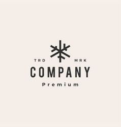 snow flakes hipster vintage logo icon vector image