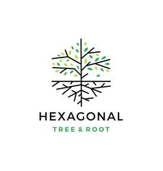 tree root hexagonal logo icon vector image