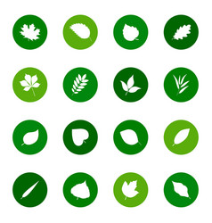 set of leaf icons on color backgrounds vector image vector image