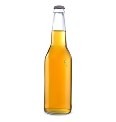 transparent bottle with light beer vector image vector image