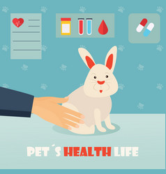 veterinary medicine hospital doctor with cute vector image