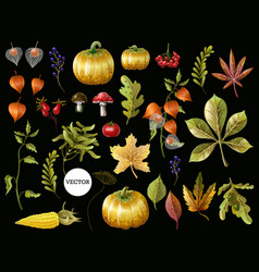 big set autumn leaves fruits berries vector image