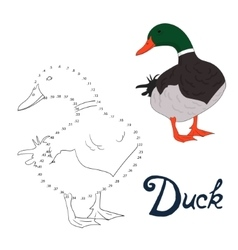 Educational game connect dots to draw duck bird vector