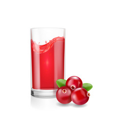 Glass of cranberry juice with realistic cranberry vector