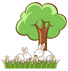 Isolated picture two bunnies in garden vector