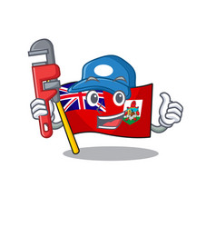 Plumber flag bermuda cartoon on pole vector