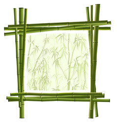 Square frame from green bamboo vector