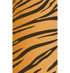 tigerskin4 vector image