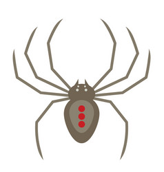 flat style of spider vector image
