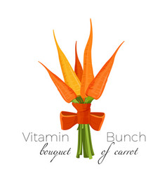 bunch of carrots bound with parsley green spinach vector image vector image