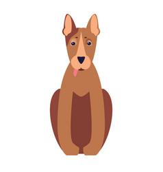 cute pit bull dog cartoon flat icon vector image vector image