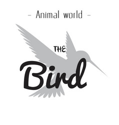 animal world the bird gray hummingbird background vector image