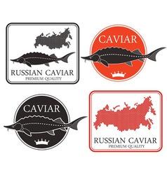 Caviar vector