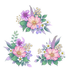 hand drawn flowers bunches set vector image