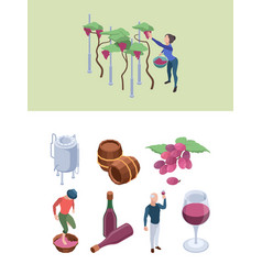 wine production vineyard people working winery vector image