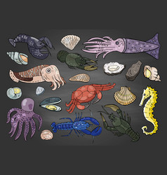 hand drawn different seafood colored on black vector image
