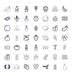 Organic icons vector