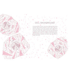 polygonal cell background vector image