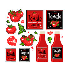 set template labels for tomato ketchup vector image